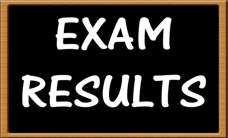 how to check noun exam result